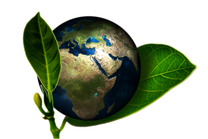 Green Granulate Earth Ecology Environmental Friendly 300x200